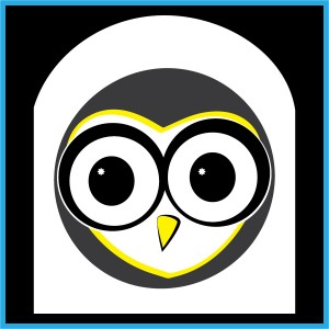 barn owl illustration_team image