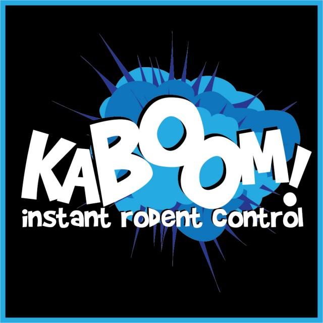 kaboom explosion logo_black__team image